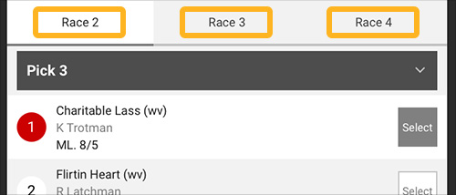 Image - Horses - P3 - Selections