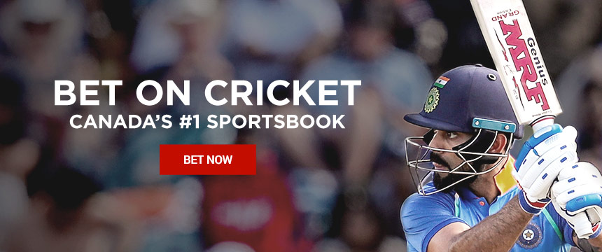 ICC Cricket World Cup Betting, Odds and Insights