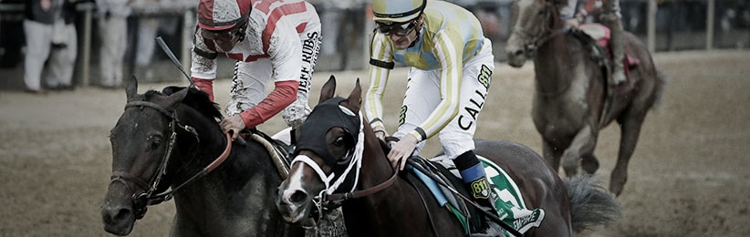 Early 2017 Belmont Stakes Preview - Bodog