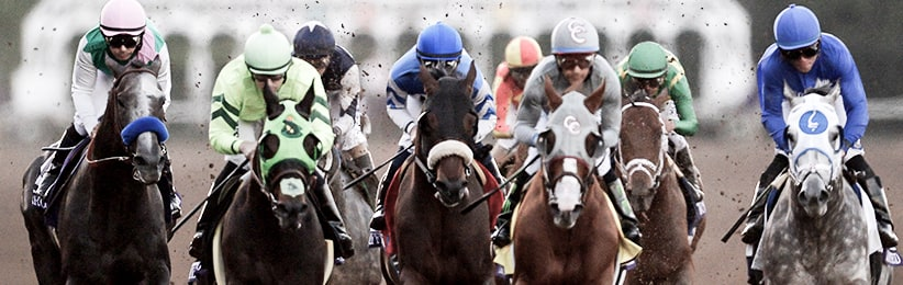Breeders' Cup Betting Guide - Bodog Horses
