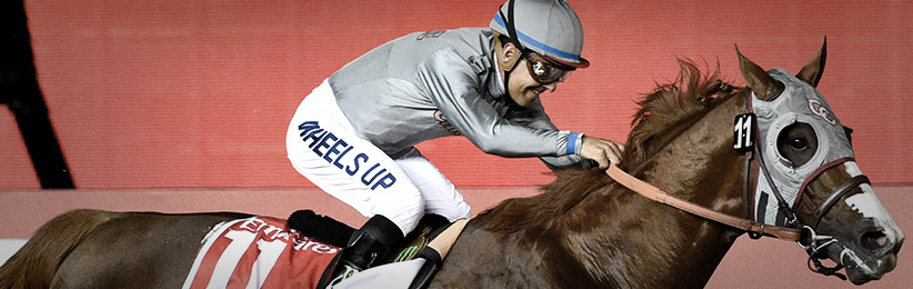 California Chrome Leads the Pack on the Breeders' Cup Futures Board